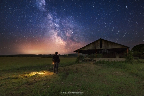 Studland Forest Milky Way