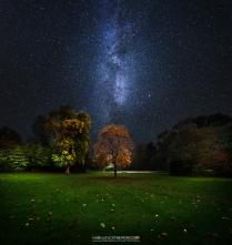 Littlebredy Milky Way